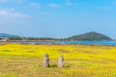 Free Canola Field At Seongsan Ilchulbong, Jeju Island, South Korea. Stock Images - 106946124
