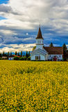 Canola Field and Church Stock Images