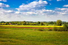 Canola field on countryside Stock Photo
