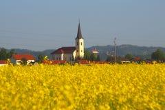 Canola Field In Spring, Slovenia. Village Cirkovce with Ptujska Gora monastery in the background and blooming canola field in spring in eastern Slovenia stock photo