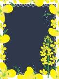 Canola Flowers Frame_eps Royalty Free Stock Photos
