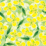 Canola Flowers Seamless Pattern_eps Royalty Free Stock Photography