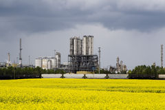Canola and Industrail plant. A canola field photographed in front of an industrial plant Royalty Free Stock Photos