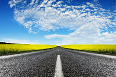 Canola Road Stock Photos