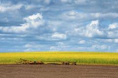 Canolafeld und ein Bauernhof impliment lizenzfreies stockbild