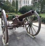 canon старый Стоковая Фотография