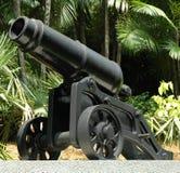 canon стоковые изображения rf