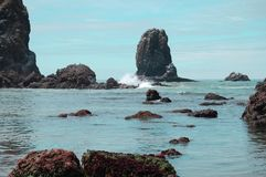 Canon Beach Oregon. Low tide at Canon Beach Oregon Royalty Free Stock Photo