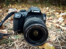 Canon 1300D image stock