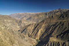 Canon del Colca Royalty Free Stock Photography