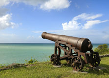 Canon donnant sur l'océan Images stock