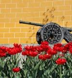 Canon et tulipes chez Kremlin photographie stock libre de droits