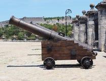 Canon på museet i Kuba Arkivfoto