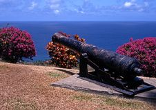Canon, Scarborough, Tobago. Canon and pretty plants overlooking the sea at Fort St. George, Scarborough, Tobago, Trinidad and Tobago, Caribbean, West Indies stock image