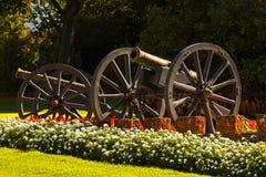 Canon skärm Royaltyfria Bilder