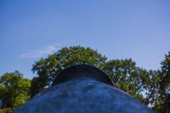 Canon viejo que mira hacia fuera en un bosque Foto de archivo libre de regalías