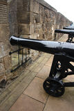 Canons au fort Photos stock