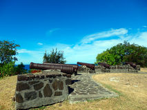 Canons at hamilton, bequia Stock Photos