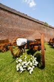 Canons near wall Royalty Free Stock Photo