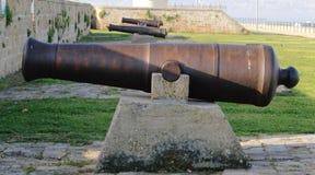 canons photos stock