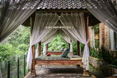 Canopies for massage in resort stock image