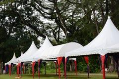 canopy Royaltyfri Foto