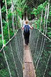 Canopy bridge. In taman negara, malaysia royalty free stock photo