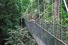 Canopy bridge Stock Photo