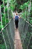 Canopy bridge Stock Image