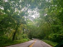 Canopy road stock photography
