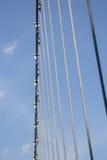 Canopy steel bridge walkway in the garden Royalty Free Stock Image