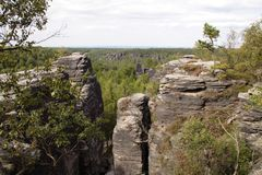 Forest canopy with high rocks. royalty free stock photography