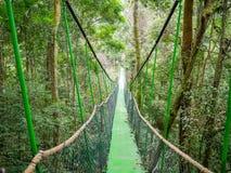 Canopy Trail in Bukit Lawang Orangutan Viewing Centre. View of Canopy Trail in Bukit Lawang Orangutan Viewing Centre. The canopy trail is new attraction, located stock images