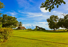 Canopy and tree at tropical beach Stock Photography