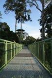 Canopy Walk! Stock Image