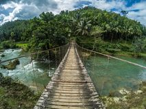 Canopy walk over the river