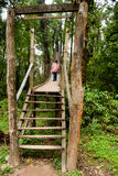 The Canopy Walk Way Royalty Free Stock Photo