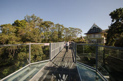 Canopy walks at Queen sirikit botanic garden Chiang Mai, Thailan Stock Photography