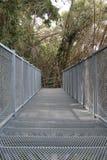Canopy walkway Royalty Free Stock Image