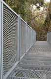 Canopy walkway Stock Photos