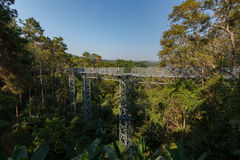 The Canopy walkway, Queen Sirikit Botanic Garden royalty free stock photography