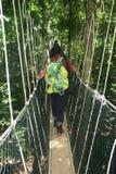 canopyen går Fotografering för Bildbyråer