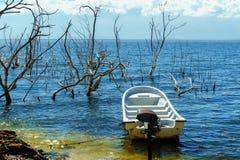 Canot automobile vide blanc sur le lac de sel, les troncs des arbres sans feuilles dans l'eau, lac Enriquillo Photos libres de droits