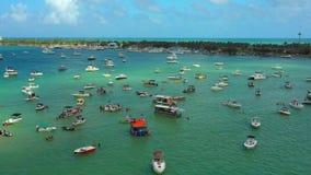 Canotaje aéreo de Miami Beach de la cantidad del abejón en la bahía almacen de video