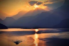 Canottaggio di tramonto fotografie stock libere da diritti