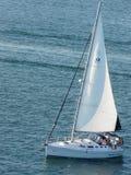 Canottaggio a San Diego Fotografia Stock