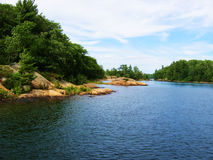 Canottaggio sul fiume Immagine Stock