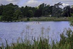 Canottaggio sul lago Immagine Stock