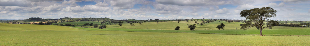 Canowindra Pastoral Countryside Landscape Panorama. The beautiful undulating pastoral landscape of Canowindra in country NSW, Australia.  14 image stitched Stock Photo