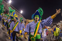 Canrnival 2014 Fotografia Royalty Free